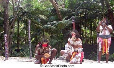 culture, queensla, aborigène, exposition