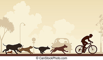 cycliste, chasser, chiens