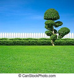 décoratif, blanc, arbre, barrière