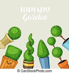 décoratif, plants., jardin, arbres, buis, topiary, pots fleurs