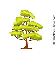 décoratif, vert, vecteur, arbre, icône