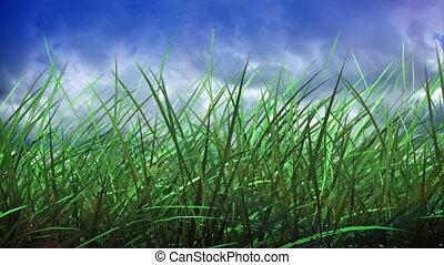 défaillance, herbe, ciel, temps