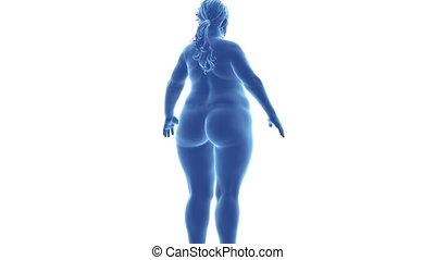 défaillance, mince, -, femme, temps, alpha, obésité, canal