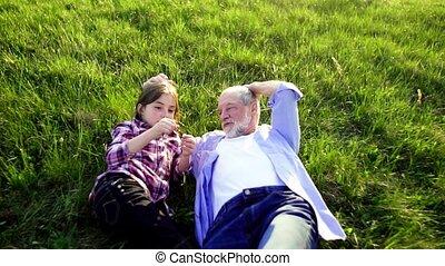 délassant, nature, printemps, petite-fille, dehors, grand-père, grass., personne agee