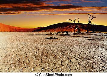 désert, namib, namibie, sossusvlei
