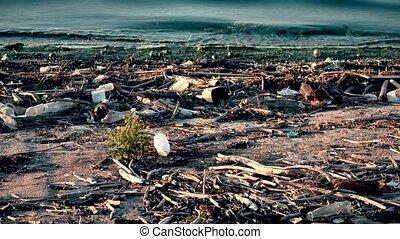 désert, plastique, ambiant, déchets ménagers, plage, pollution