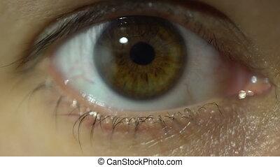 détaillé, regarder, oeil, macro, haut, anatomie, appareil photo, humain, fin, vue