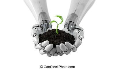 détaillé, ultra, défaillance, sol, beau, temps, bras, robotique, arrière-plan., croissant, 3840x2160, élevé, animation, conceptuel, blanc, tient, plante, 3d, 4k, hd