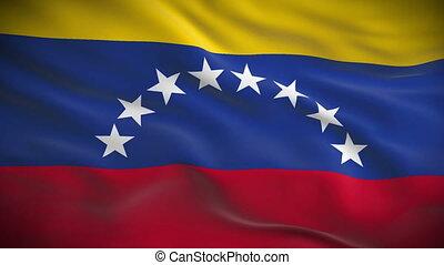 détaillé, venezuela, hautement, drapeau