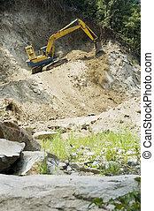 développement, destruction, nom, forêt