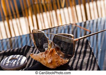 dames, foyer, day., oeil, profil, chat, grand, coquille, été, lunettes soleil, modèle, sélectif, lentilles, séjour