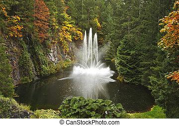 danse, île, vancouver, fontaine, magnifique