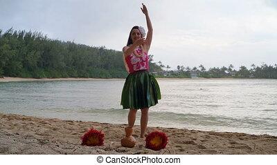 danse, hawaï, déguisement, danseur, 4k, hula
