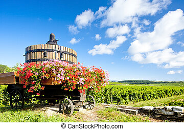 de, france, beaune, vignobles, cote, bourgogne, pommard