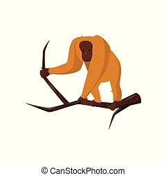 debout, brun, fourrure, singe, plat, bois, face., grand, orange, vecteur, jungle, orang-outan, sauvage, branch., animal, icône