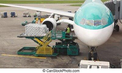 debout, marchandises, service, piste atterrissage, ouvriers, avion, chargé