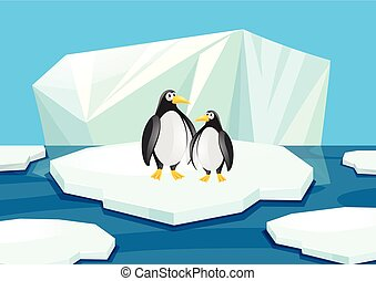 debout, pingouins, deux, glace