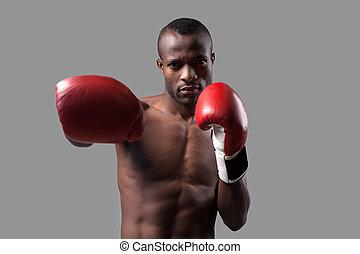 debout, sien, boxeur, gris, boxer., étirage, isolé, jeune regarder, confiant, quoique, appareil photo, gants, africaine, main, boxe, dehors