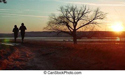 debout, silhouette, nature, athlétique, hommes, arbre, jeune, pin, deux, sain, courant, coucher soleil, forêt, homme, dehors, seul, style de vie, sport, silhouette., route, sunlight.