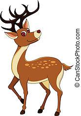 deers, fond, isolé, blanc