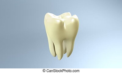 dent, jaune, blanc