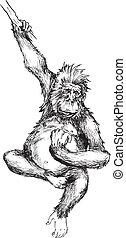 dessiné, main, singe, pendre