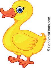 dessin animé, canard
