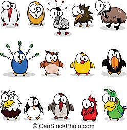 dessin animé, collection, oiseaux