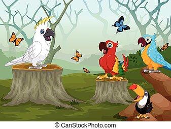 dessin animé, forêt, profond, oiseau