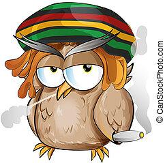 dessin animé, jamaïquain, hibou