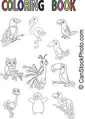 dessin animé, livre, oiseau, coloration