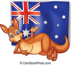 devant, kangourou, drapeau australien