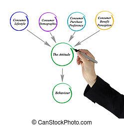 diagramme, affecting, attitude, facteurs