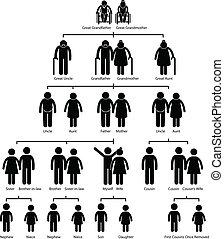 diagramme, arbre, famille, généalogie