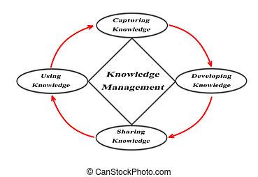 diagramme, connaissance, managment