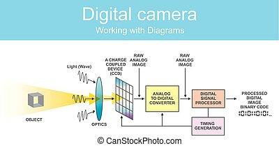 diagramme, dslr., numérique