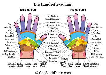 diagramme, main, reflexology, description