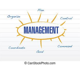 diagramme, modèle, gestion, illustration