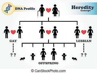 diagramme, profil, héréditaire, adn, (genetic), (forensic, science)