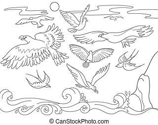 différent, coloration, genres, au-dessus, lignes, dessin animé, livre, fly., mer noire, children., blanc, oiseaux
