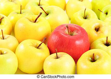 différent, entre, pommes, jaune, pomme, rouges, concept