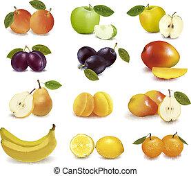 différent, fruit, sorts, groupe