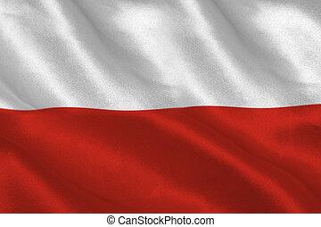 digitalement, polonais, engendré, ondulation, drapeau