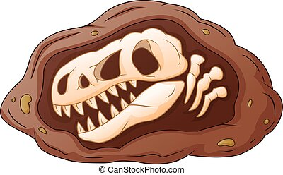 dinosaure, tête, dessin animé, fossile