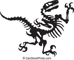 dinosaure, vecteur, rapace, fossile