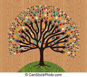 diversité, bois, modèle, sur, arbre, mains