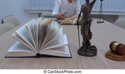 documents, themis, législation, maître, lieu travail, avocat, examine, statuette, plan