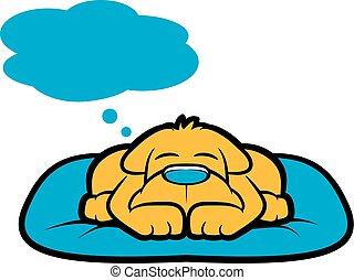 doggy, rêve