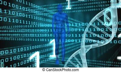 données, fond, adn, information, sombre, animation