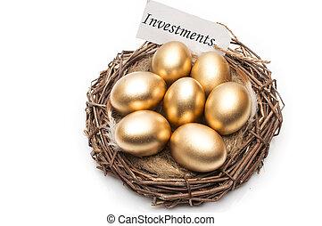 doré, concept, mot, réussi, nid, oeufs, arrière-plan., étiquette, retraite, blanc, investissements